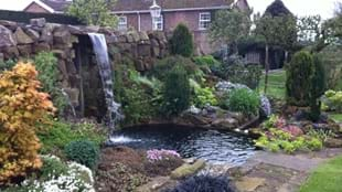 Pilmoor Cottages NGS Open Garden