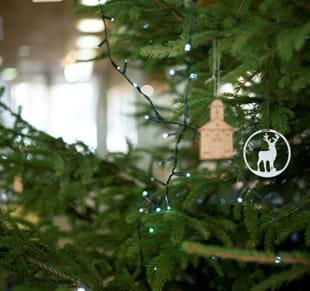 Family Workshop: Festive Tree Decorations