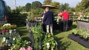 Scampston Autumn Plant Fair