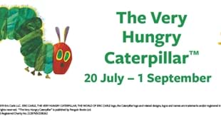 Summer Fun with the Very Hungry Caterpillar