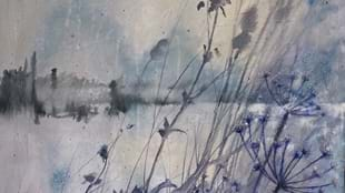 Art in the Tea Room - Jan Bulley- Plants and Landscapes