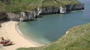 Flamborough Cliffs Nature Reserve