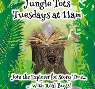 Jungle Tots at Bugtopia Hornsea