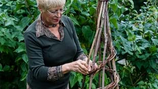 Willow Weaving with Anthea Firth - Rabbits & Hares