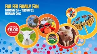 Fab Feb Family Fun