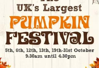 Farmer Copleys Pumpkin Festival 2019