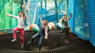 Family Fun at Treetop Nets