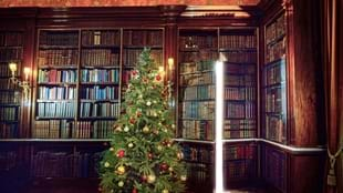 Harewood at Christmas: Festive Twilight Tour, 19 December