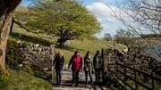 Discover the Dales