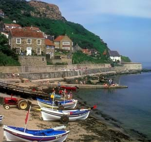 Things to see and do in the Runswick Bay area