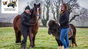Half Term Fun PONY CLUB at Thornton Hall Country Park