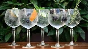 An Evening for Gin Lovers with Masons Yorkshire Gin & Fever-Tree