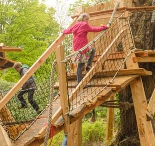 Half-Term Offer at Thorp Perrow