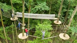 Go Ape Temple Newsam