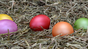 Easter Egg Hunt at Thornton Hall Country Park