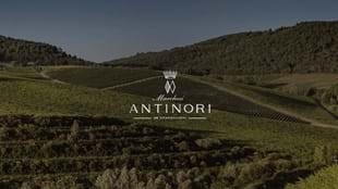 Exploring Tuscany with Antinori