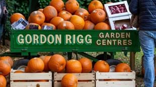 The Great Pumpkin Festival at Hebden Bridge