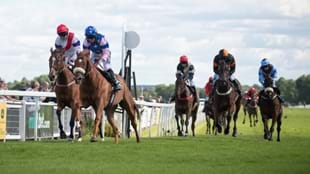 An afternoon of racing at 'Yorkshire's Garden Racecourse' - Ripon Races