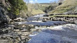 Ingleton Falls, Waterfall Trail