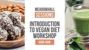 Introduction to the Vegan Diet with Tastings