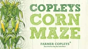 Copleys Corn Maze & Fun Park