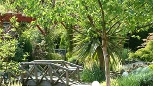 Rewela Cottage Open Garden (NGS)