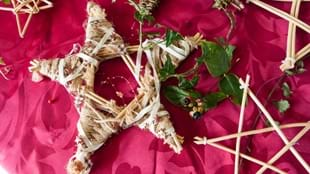 Willow Weaving with Anthea Firth - Deers, Angels and Stars