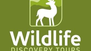 Wildlife Discovery Tours
