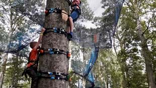 CLIMB A TREE at Treetop Nets Ripon