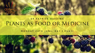Plants as food and medicine (food for free)