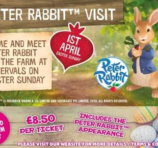 Peter Rabbit™ Visit to Thornton Hall Farm!
