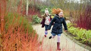 RHS GARDEN HARLOW CARR HALF TERM FAMILY FUN - WHATEVER THE WEATHER